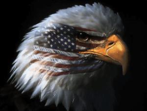 Legislacion EEUU
