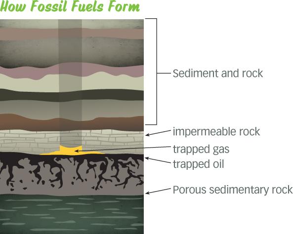 diagrama de formacion de combustibles fosiles
